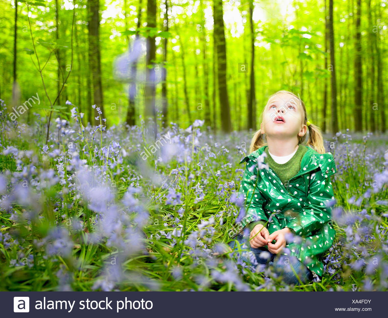 Girl looking up, in the woods Stock Photo