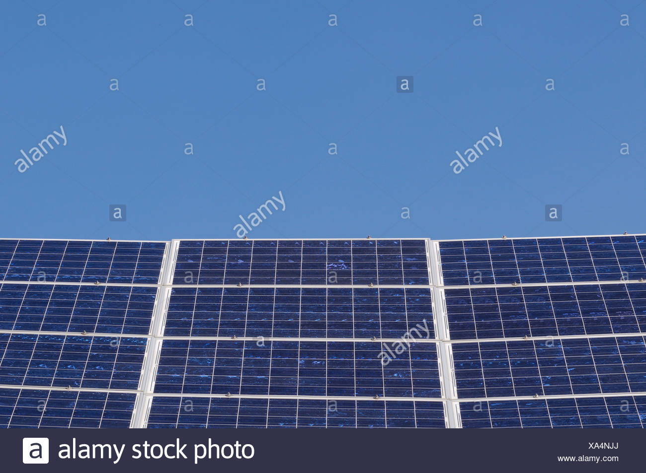 Field of solar collectors under a blue sky - Stock Image