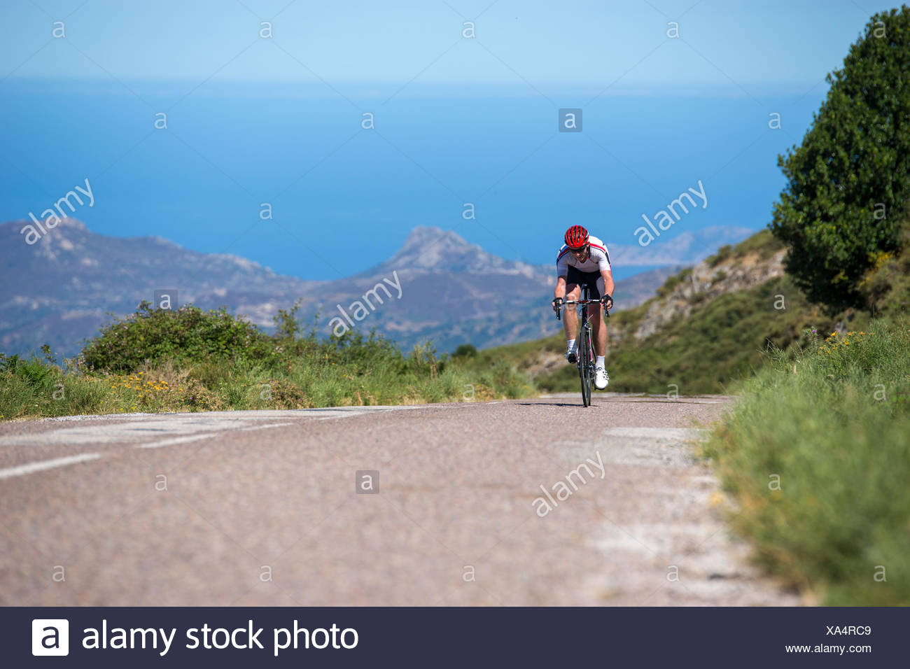 France, Corsica, Road biker racing towards camera - Stock Image