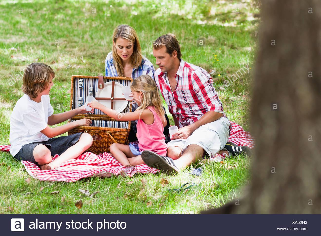 Family having picnic in park - Stock Image