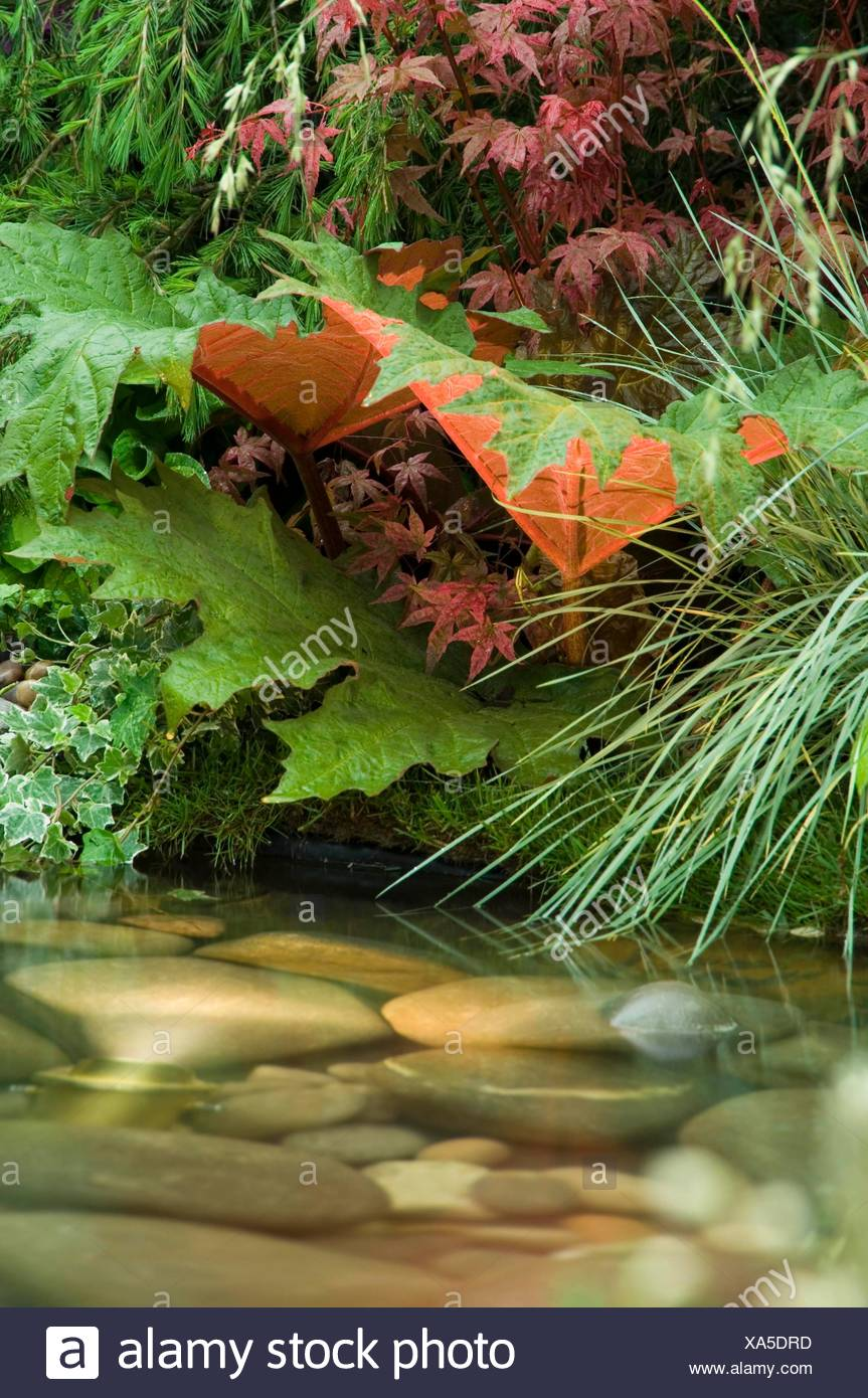 Fountain/Water Feature- - (Please credit: Photos Horticultural/Hillier Nurseries)   MIW251127     Ph Stock Photo