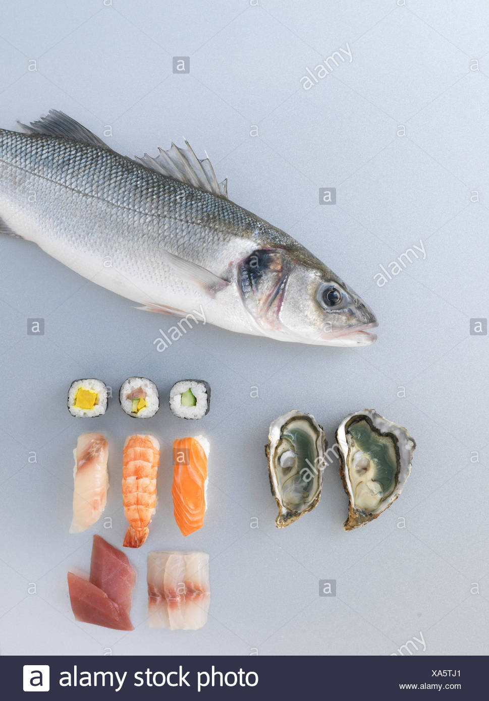 Fish composition - Stock Image