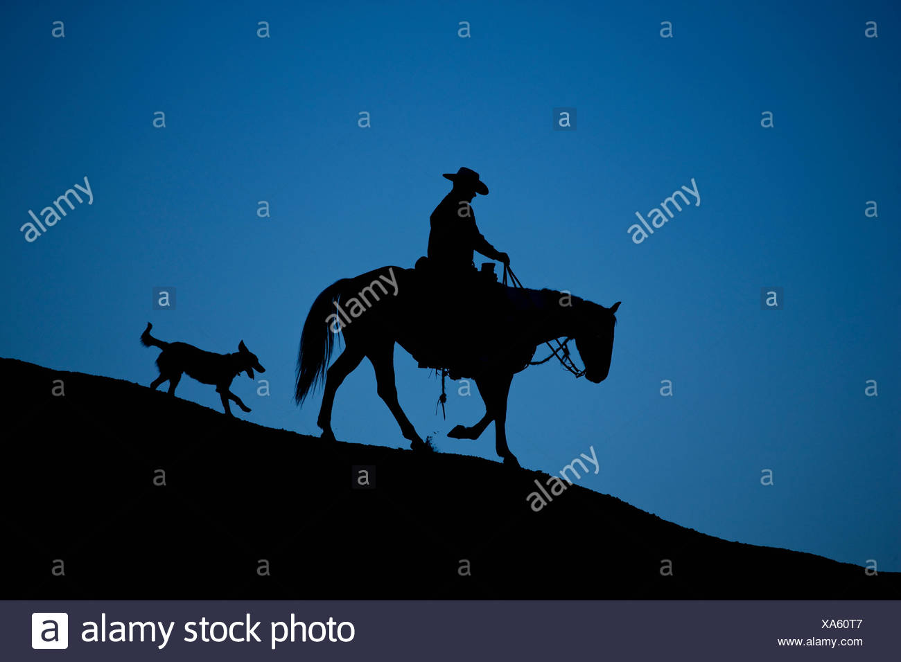 Horse and dog silhouetted at dusk. Bighorn Basin, Wyoming, USA. Model released - Stock Image