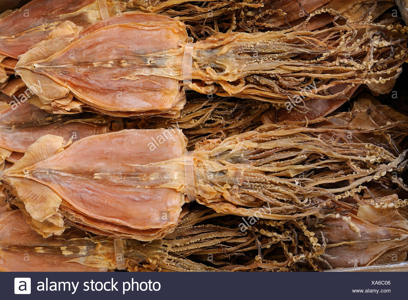 Dried squid at a fish market in Kyoto, Japan, East Asia, Asia - Stock Image