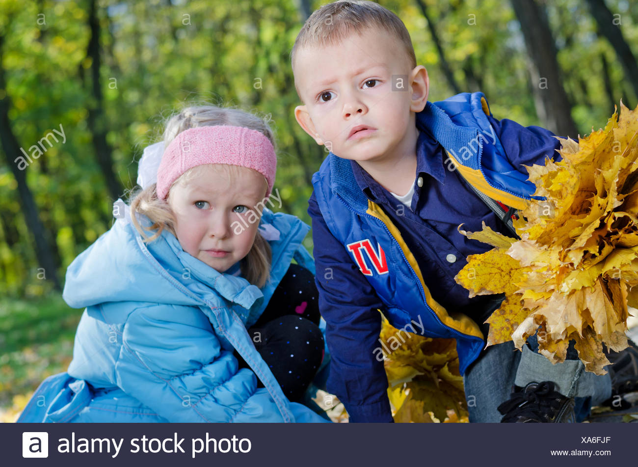 Young Children Playing in an Autumn Woodland - Stock Image
