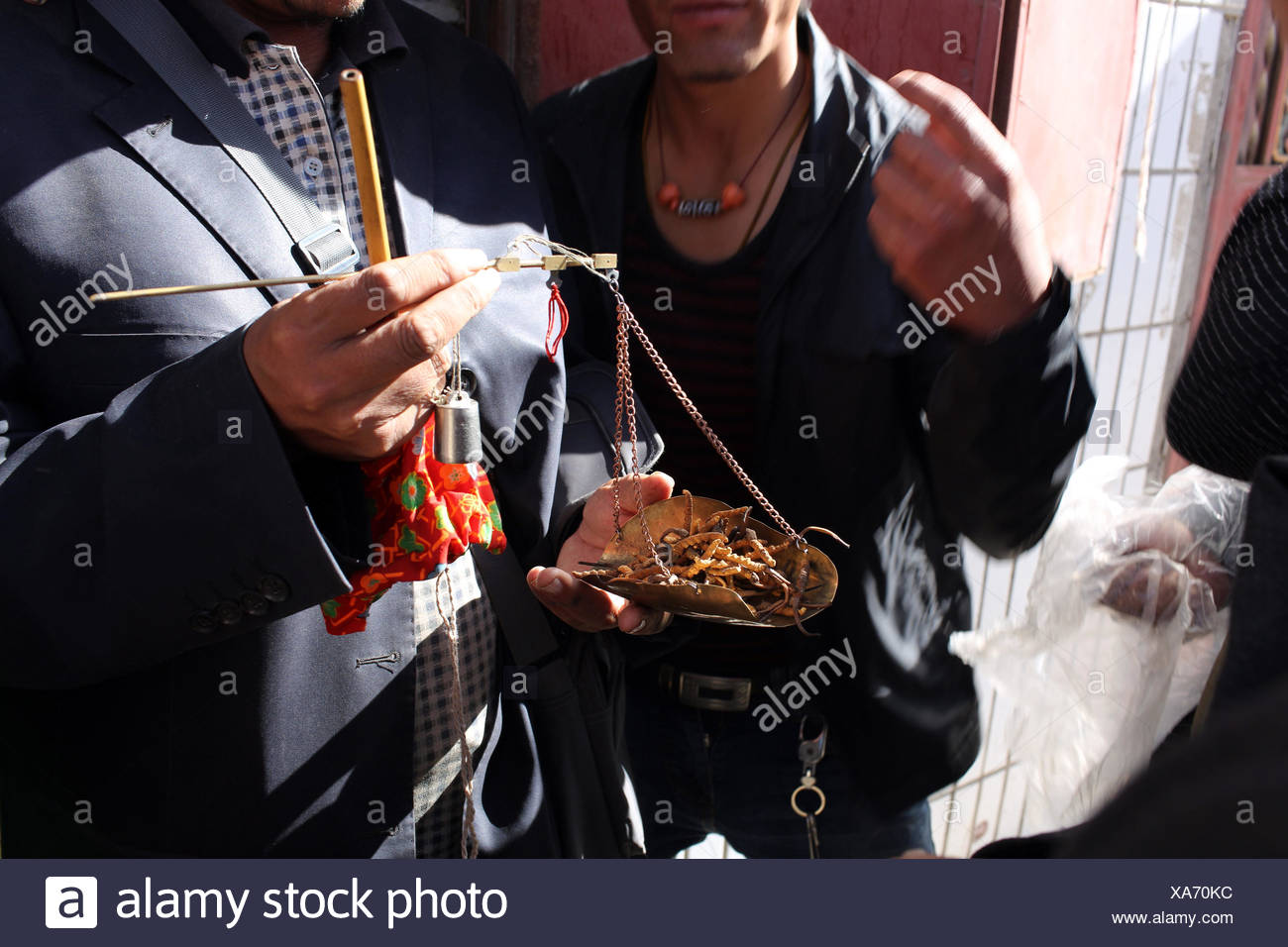 Tibetans selling caterpillar fungus in a small market. - Stock Image