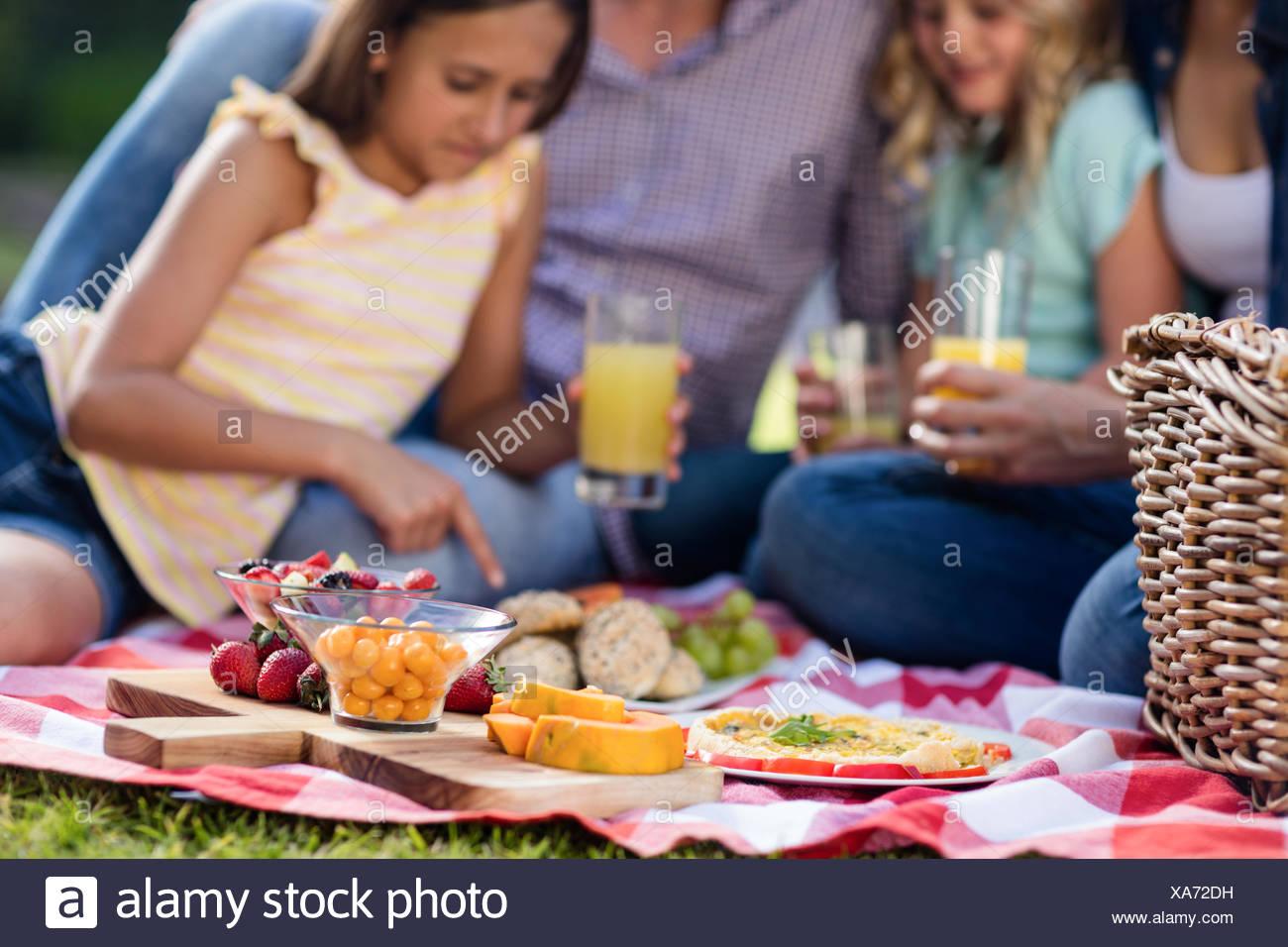 Family having a picnic - Stock Image