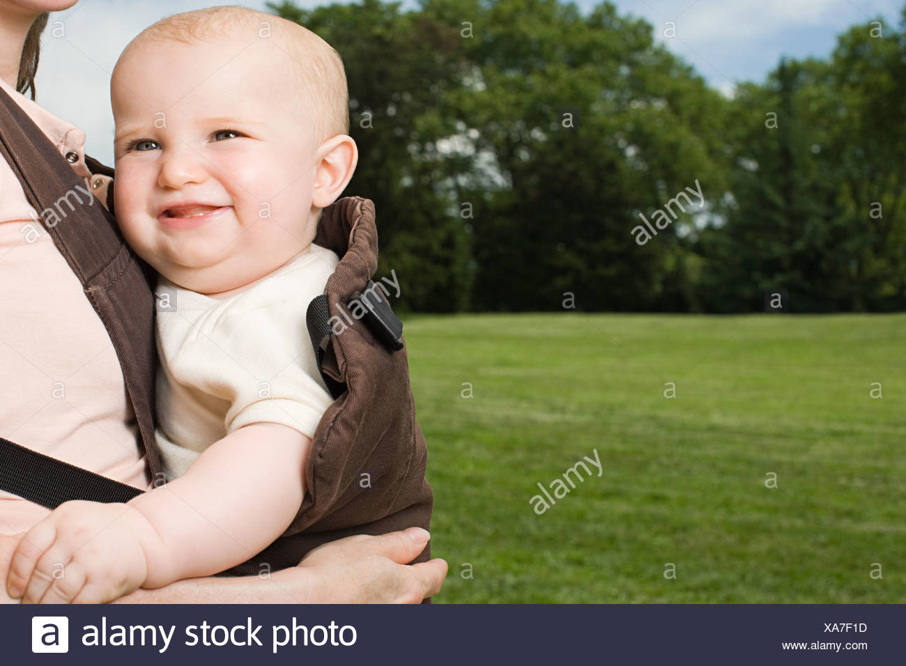 Baby in baby carrier - Stock Image
