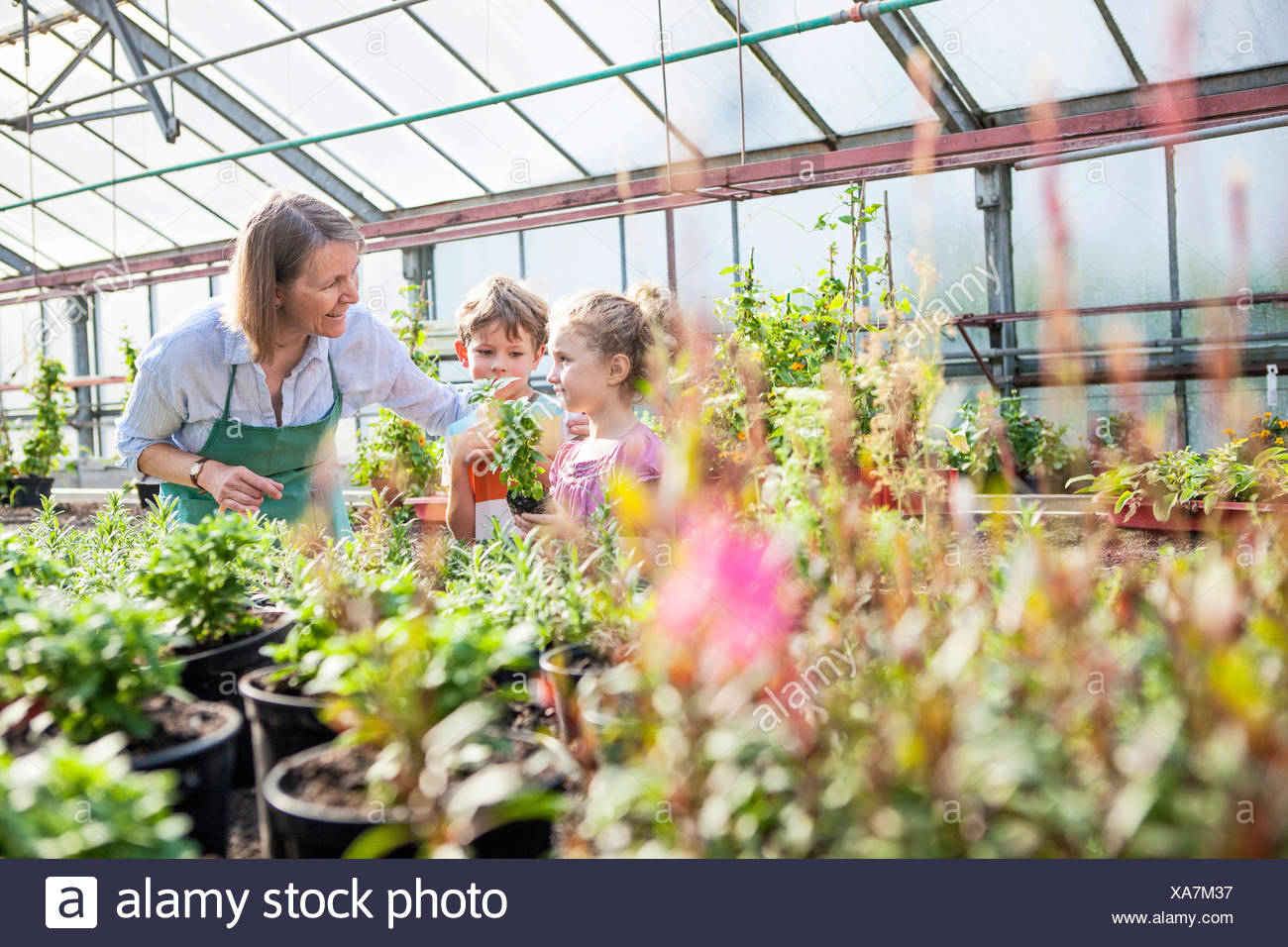 Female gardener and children in greenhouse Stock Photo