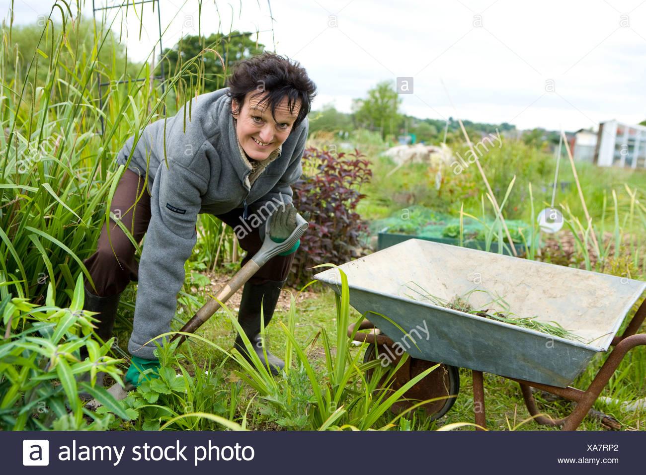 lady gardener digging in her allotment plot - Stock Image