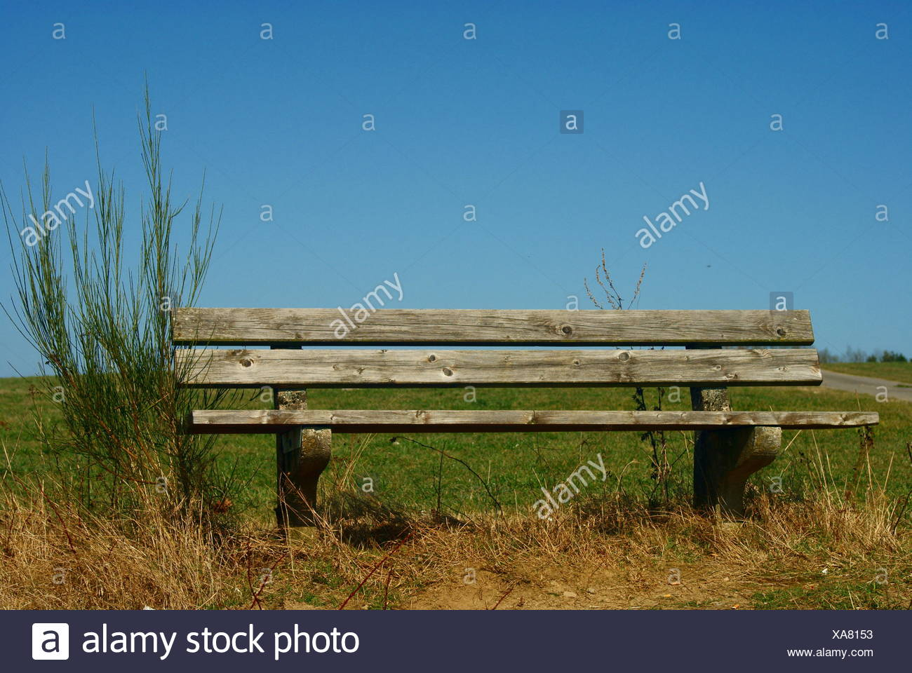 Romantic old park bench in front lawn - Stock Image