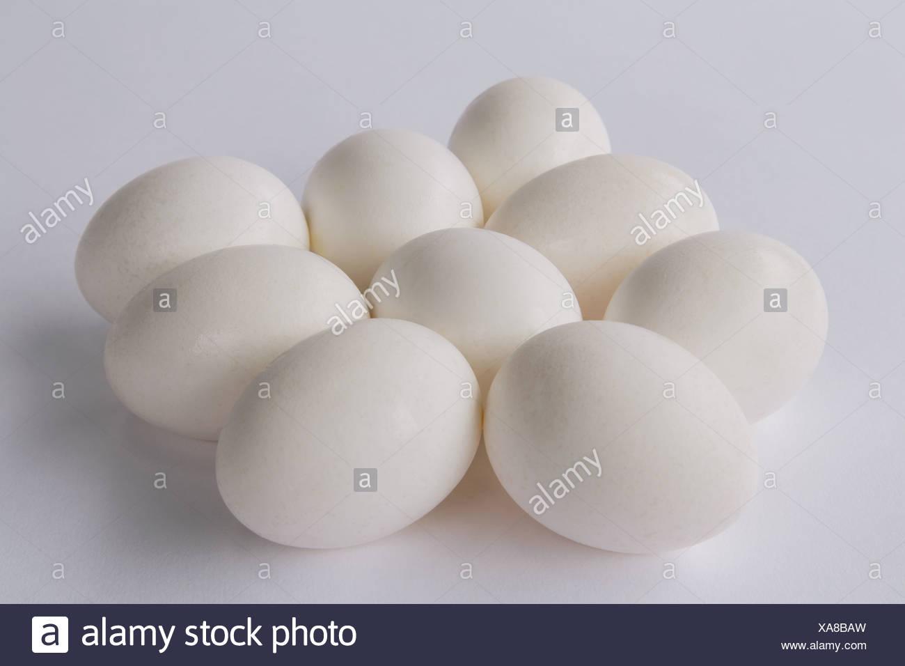 nine free range organic egg with white shells - Stock Image