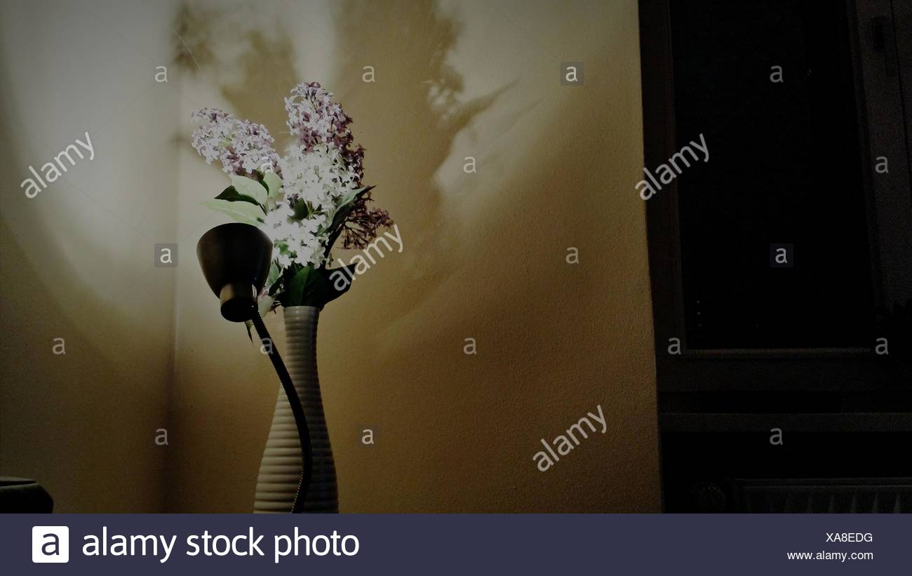 Low Angle View Of Electric Lamp And Flower Vase At Home - Stock Image