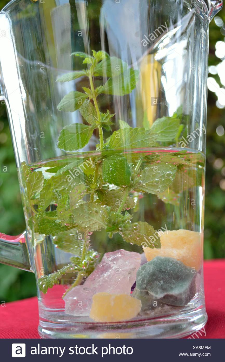 Lemon Balm water Stock Photo