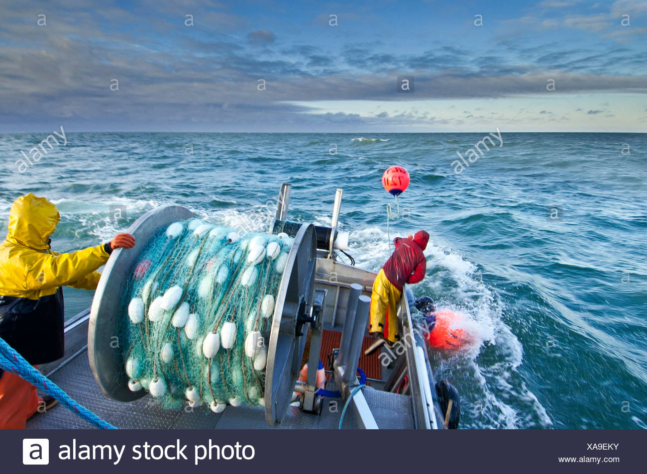 The crew casts out the first set of a gillnet in Ugashik Bay, Bristol Bay region, Southwest Alaska, Summer - Stock Image