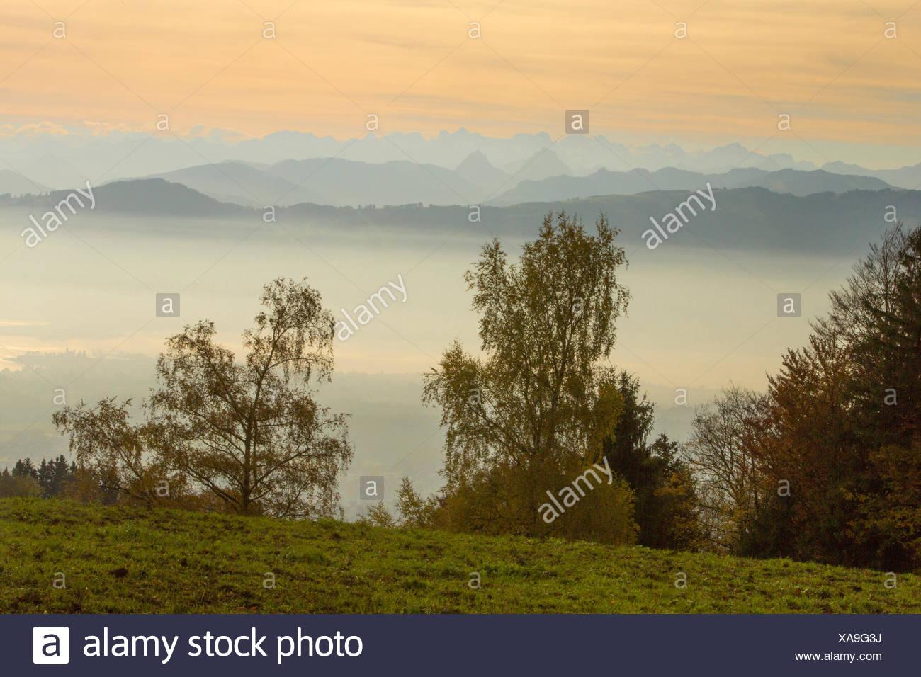 Bachtel, Zurich lake, view, Alpine chain, canton Zurich, mountain, mountains, Switzerland, Europe, - Stock Image