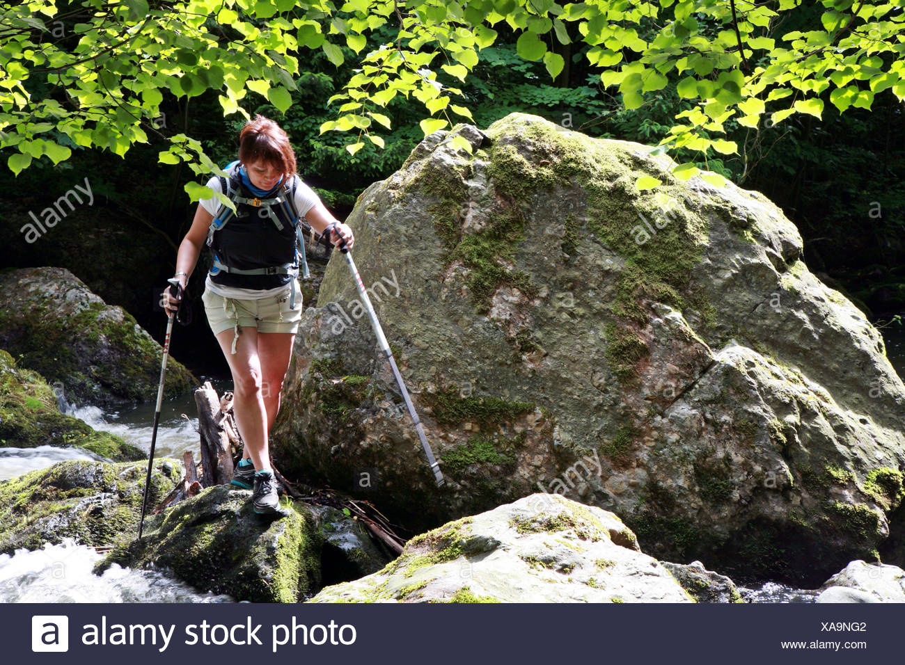 female walker with hiking sticks - Stock Image
