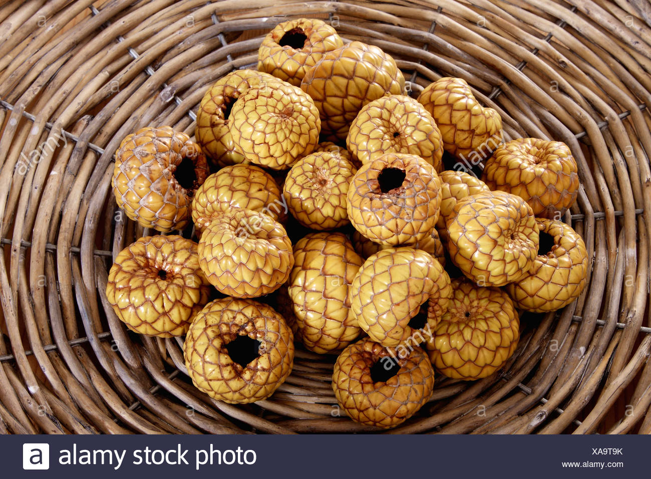 Rumbia, dried Salak fruit (Salacca zalacca) in a woven basket - Stock Image