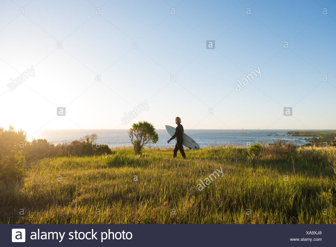 Young male surfer walking with surfboard at sunrise - Stock Image