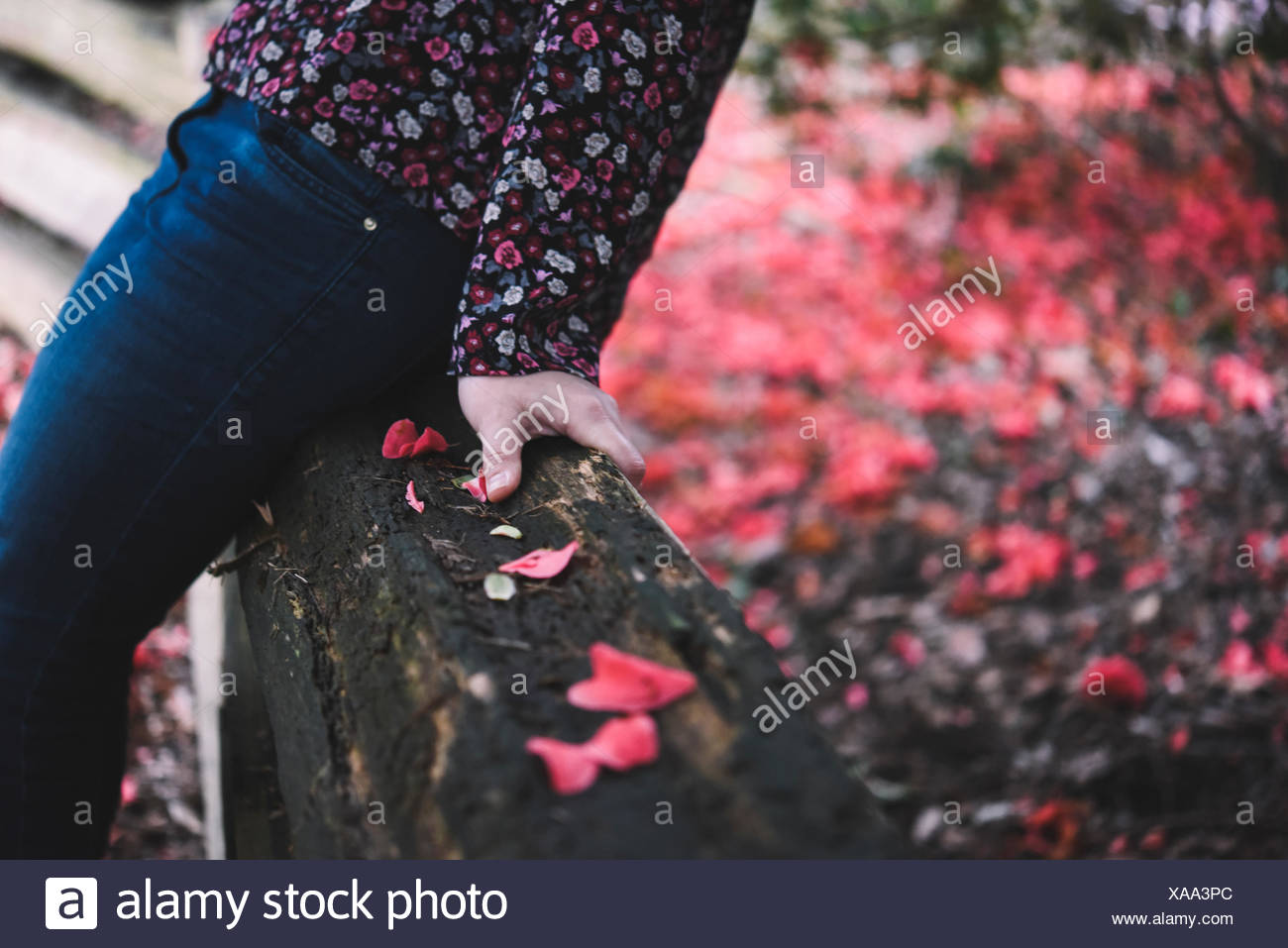 Close-up of mid section of a woman sitting on a wooden fence Stock Photo
