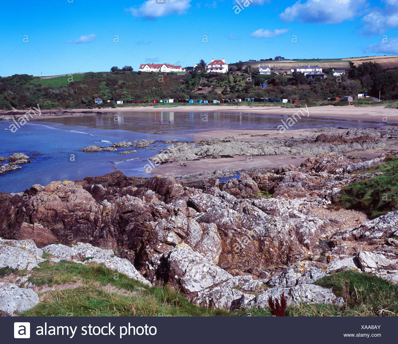 Beach at Coldingham Bay, Scotland, UK - Stock Image