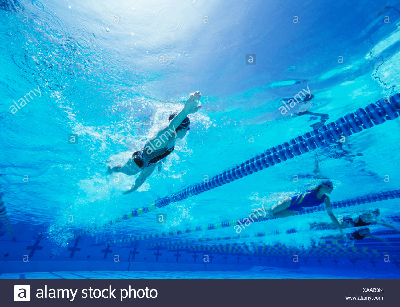 Female swimmers swimming in pool - Stock Image
