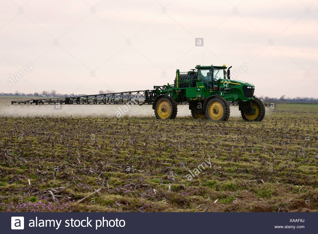 A John Deere sprayer applies pre-plant burndown herbicide in late Winter to a field that will be no-till planted to cotton. - Stock Image