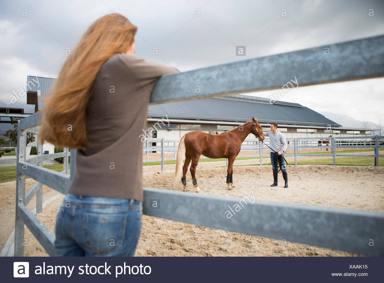 Young woman watching stablehand train horse in paddock ring Stock Photo