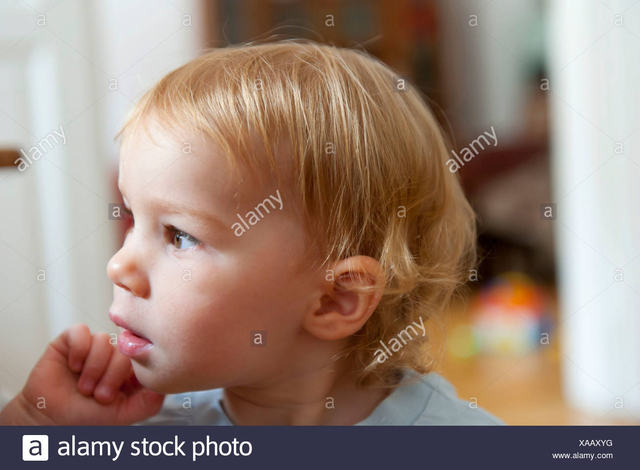 Toddler, with a pensive and interested face, portrait, inside an apartment, Munich, Bavaria - Stock Image
