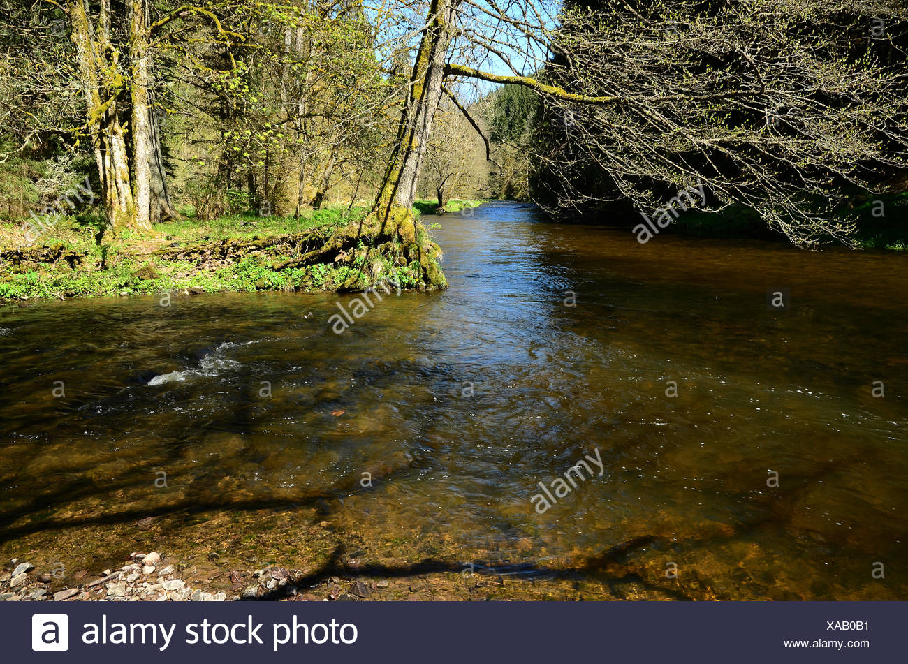 Wutach River, Black Forest, Germany - Stock Image