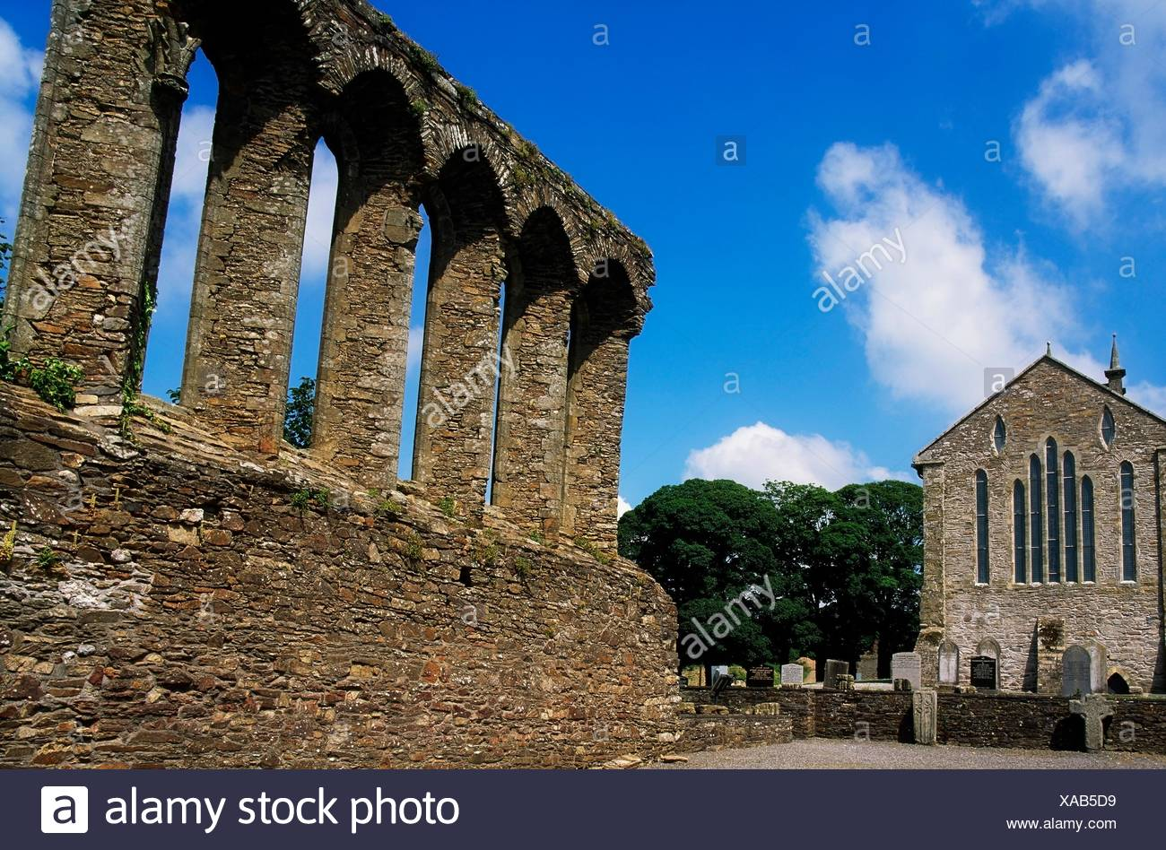 St Mary's Abbey, Ferns, Co Wexford, Ireland - Stock Image