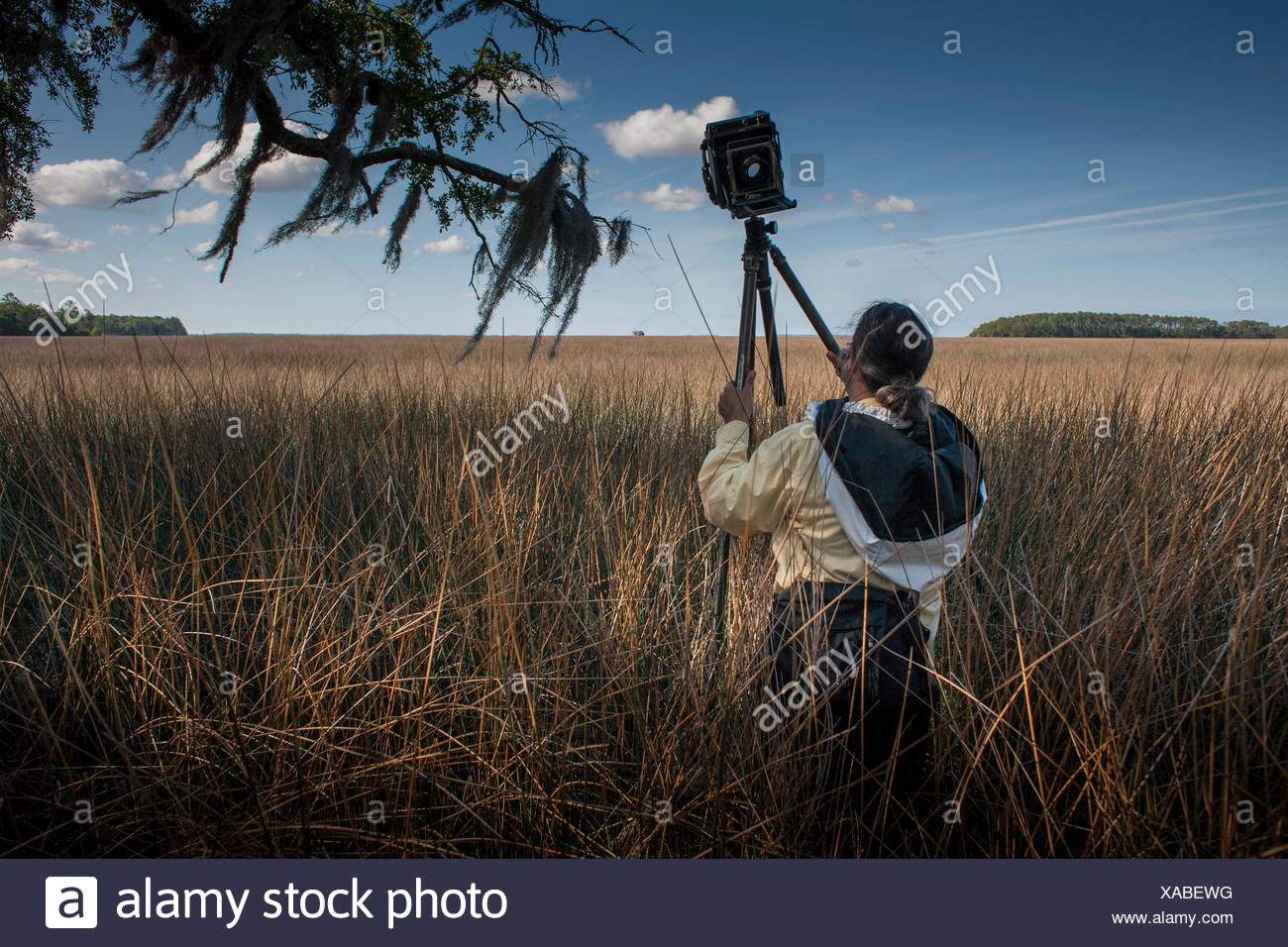A photographer with a large format view camera on assignment in the ACE Basin at Cheeha Combahee Plantation. - Stock Image
