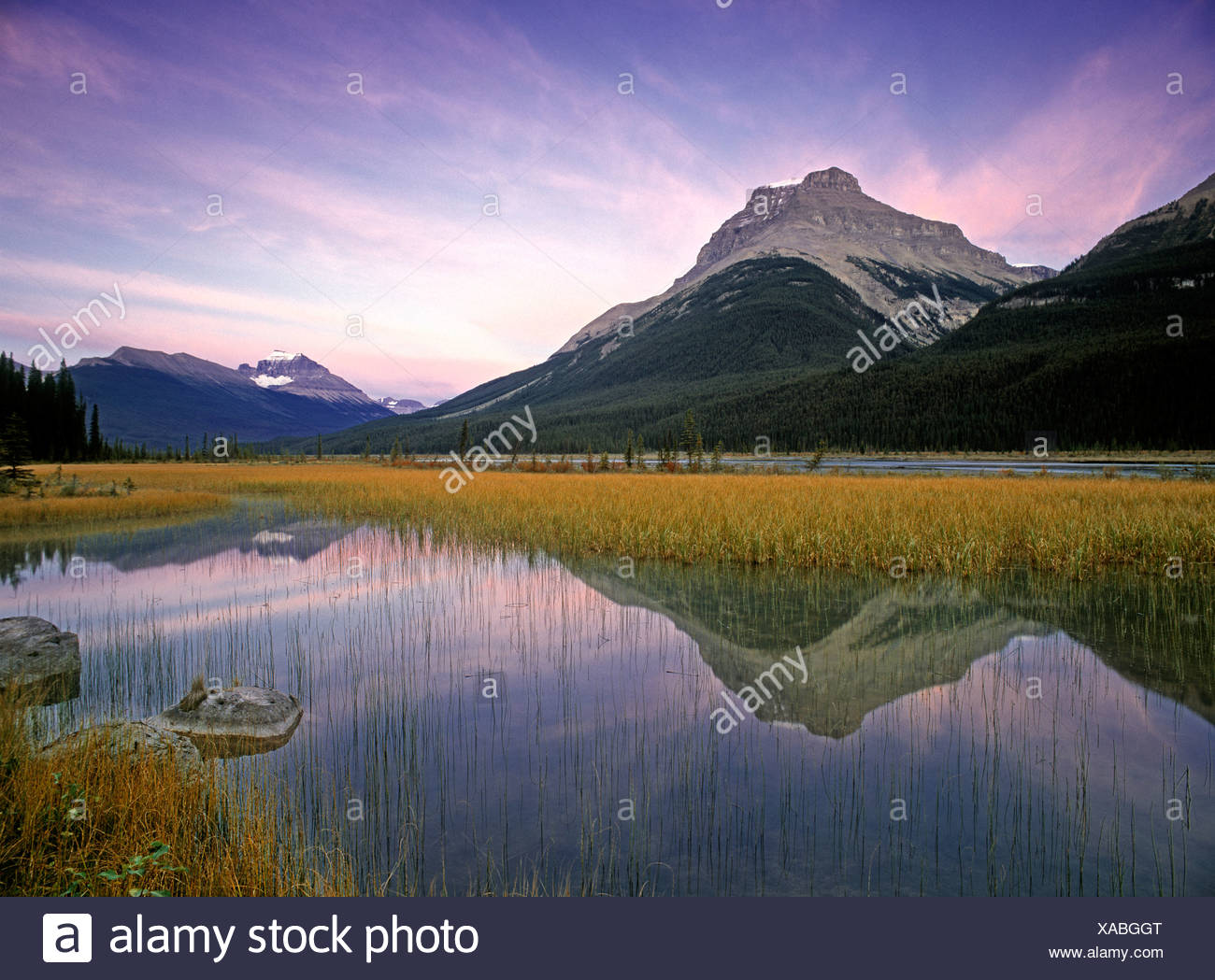 Mount Amery and Mount Athabasca at Rampart Ponds, Banff National Park, Alberta, Canada Stock Photo