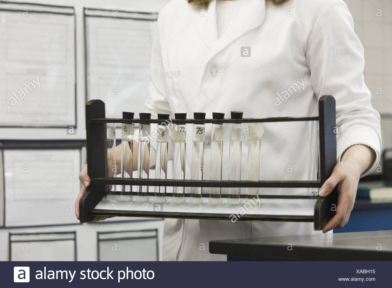 Female scientist carrying color standards in a rack - Stock Image