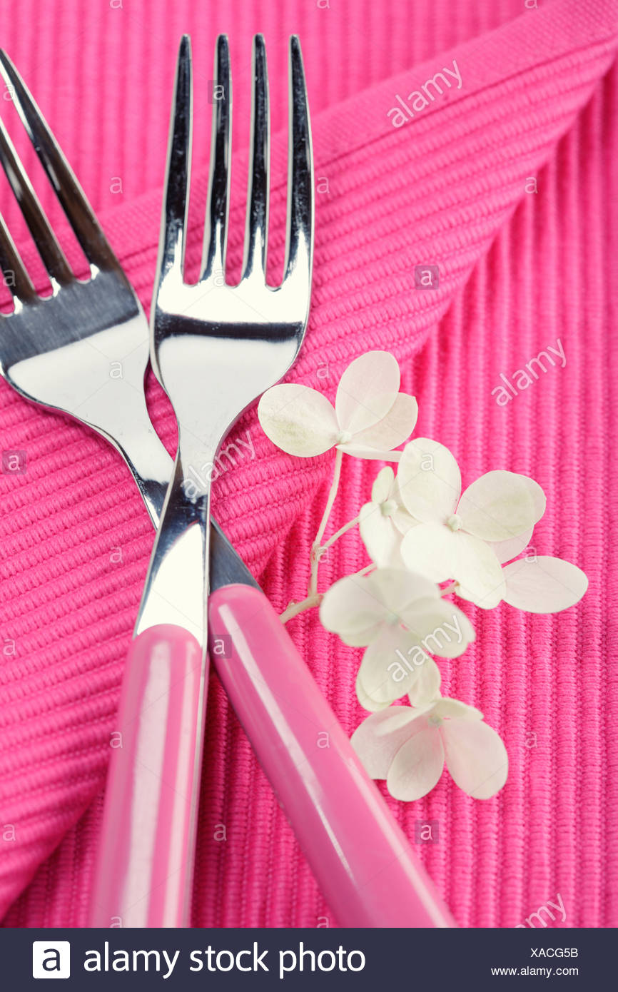 place setting with forks and hydrangea flower - Stock Image