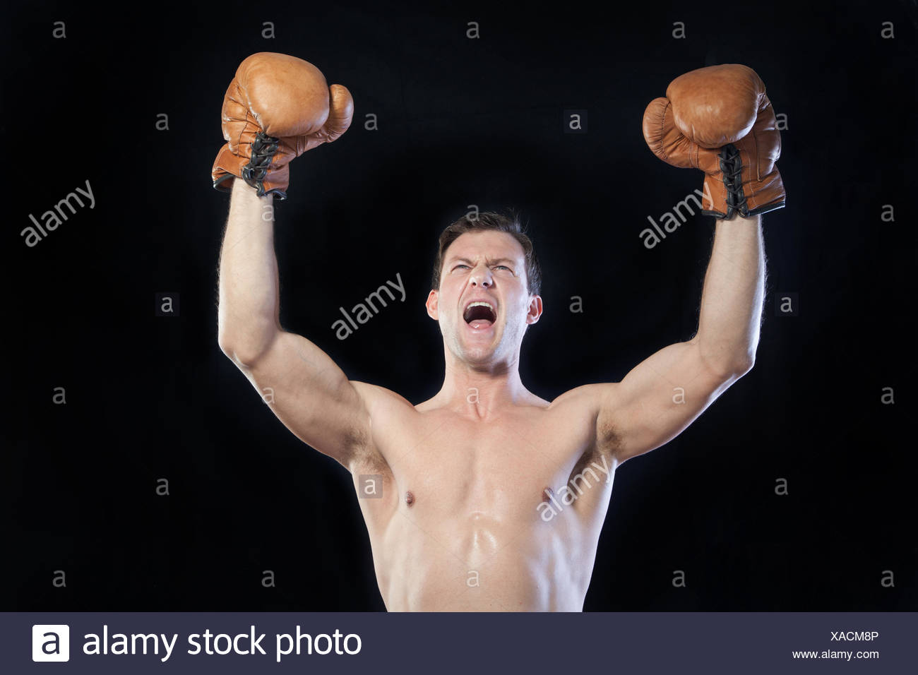 Boxer cheering with hands raised in air - Stock Image