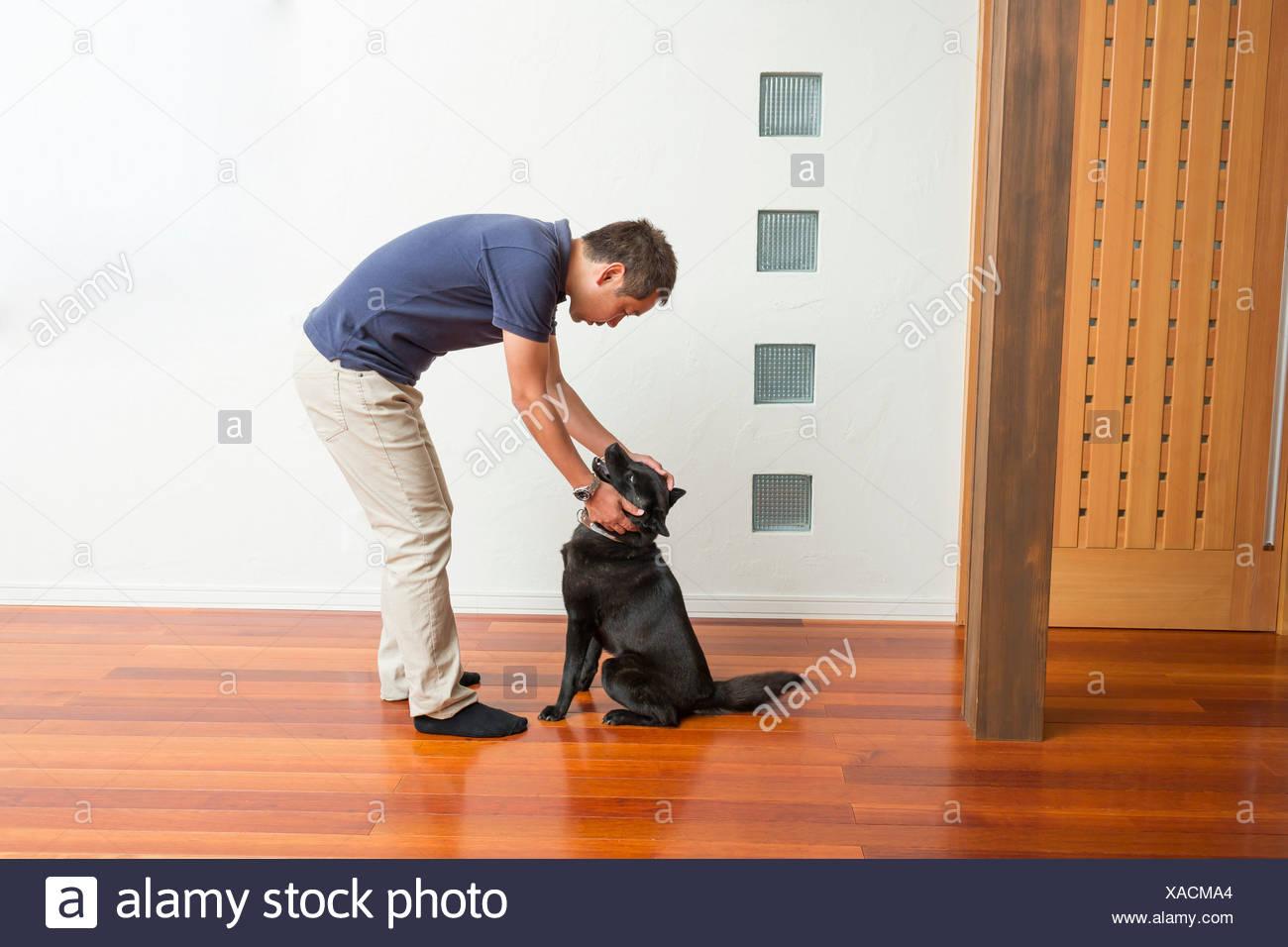 Man stroking his pet dog Stock Photo