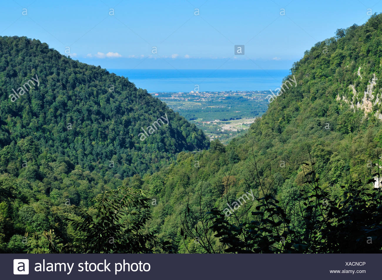 Heavily forested mountains with view over the Caspian Sea, Alborz Mountains, Mazandaran, Iran, Asia - Stock Image