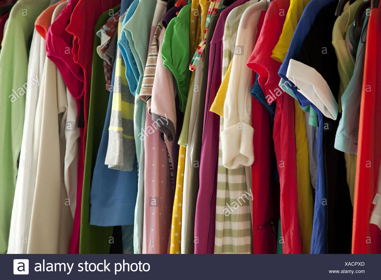 Clothes, clothes seaweeds, - Stock Image