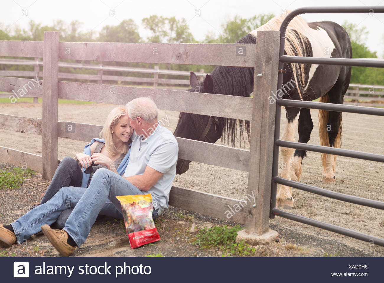 Mature couple sitting against fence and a curious horse - Stock Image