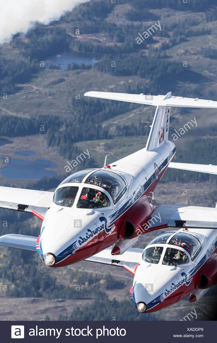 Canada's Tudor flying demonstration team, the Snowbirds, flies over mountains in strathcona Park. Stock Photo