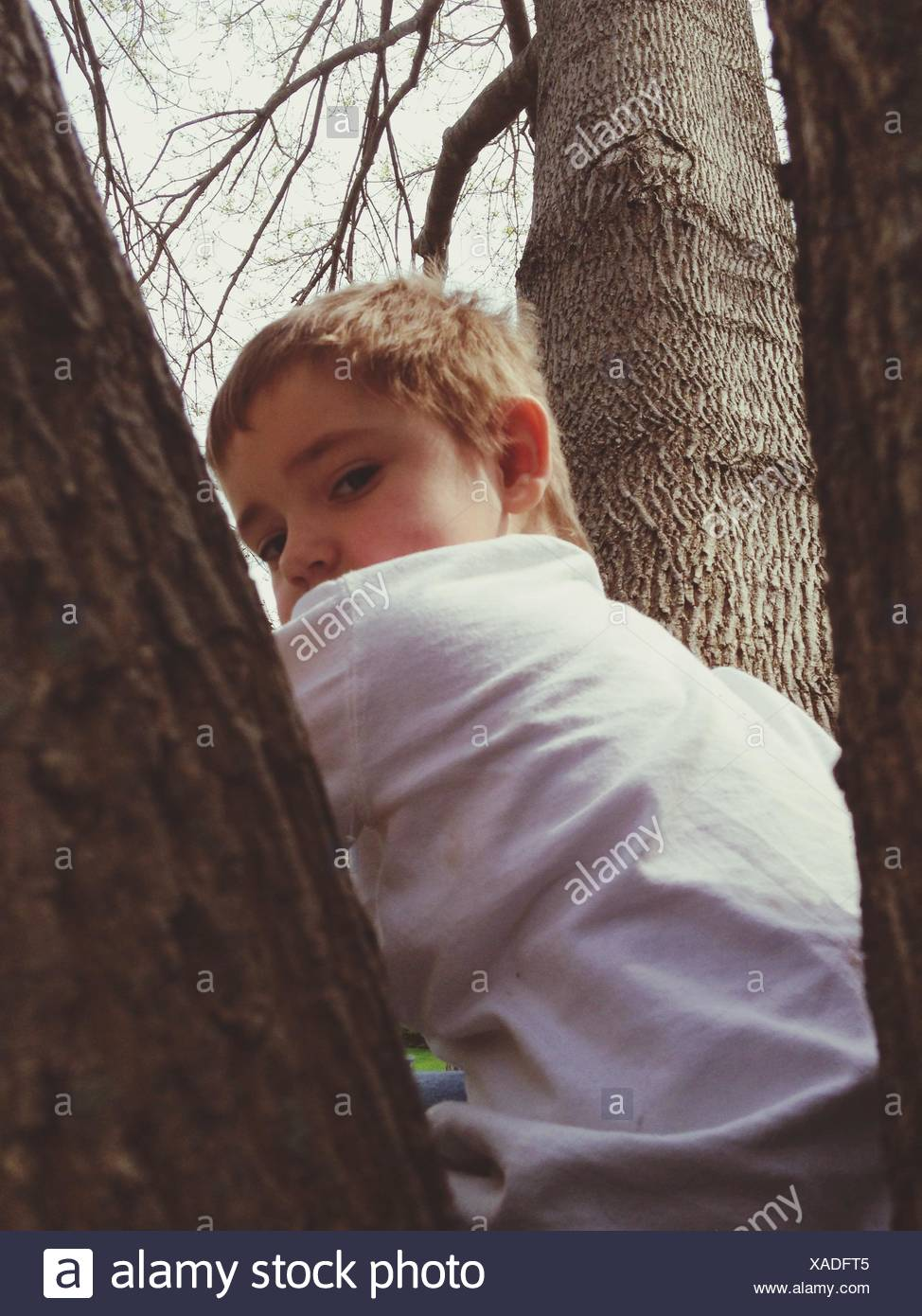 Portrait Of Boy Sitting In Park Stock Photo