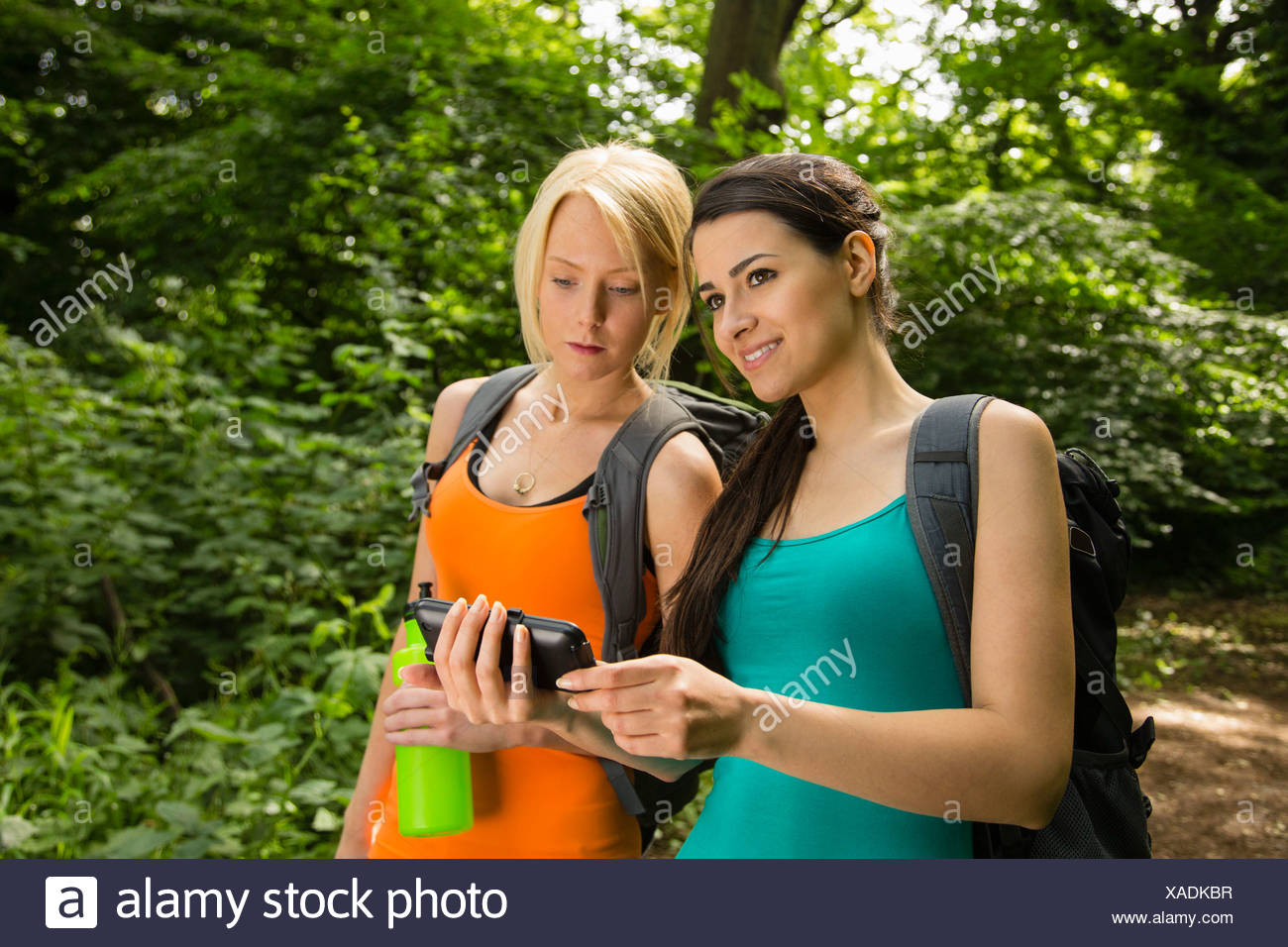 Women out walking in forest, looking at GPS - Stock Image