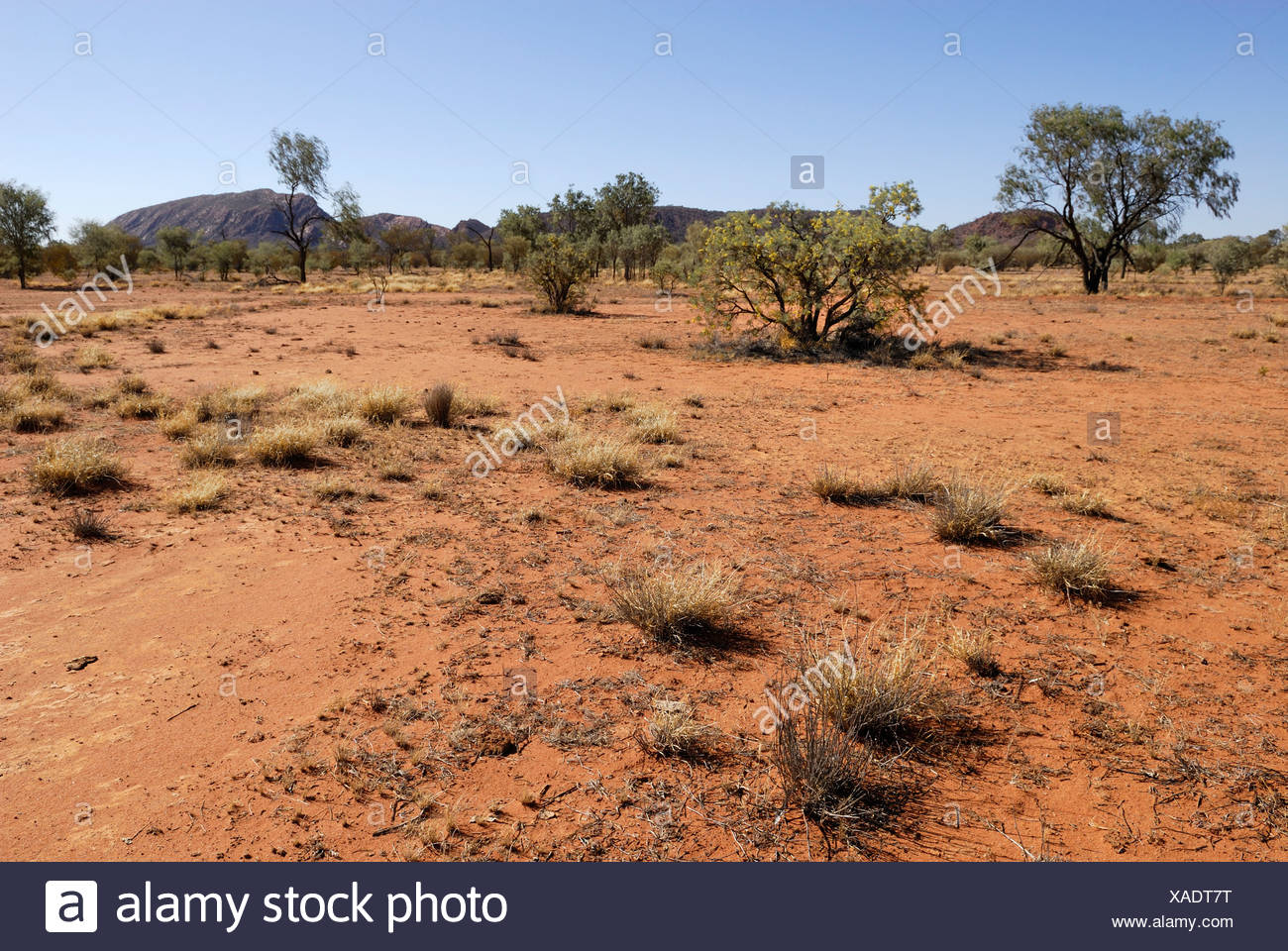 Outback, East Macdonnell Ranges, Northern Territory, Australia - Stock Image