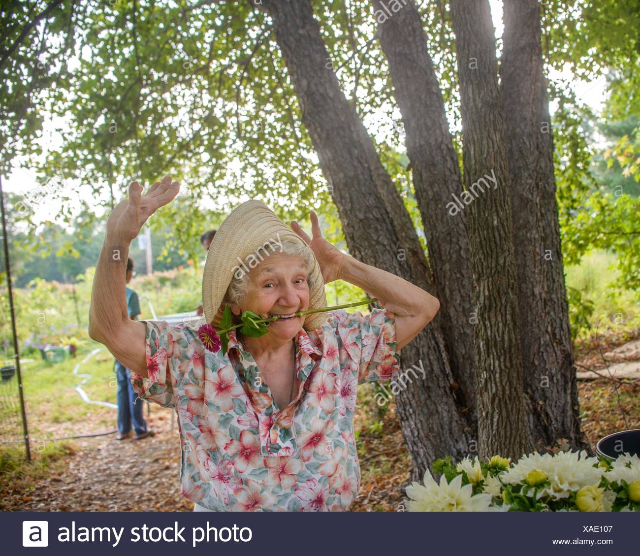 Senior woman with flower in mouth dancing on farm - Stock Image