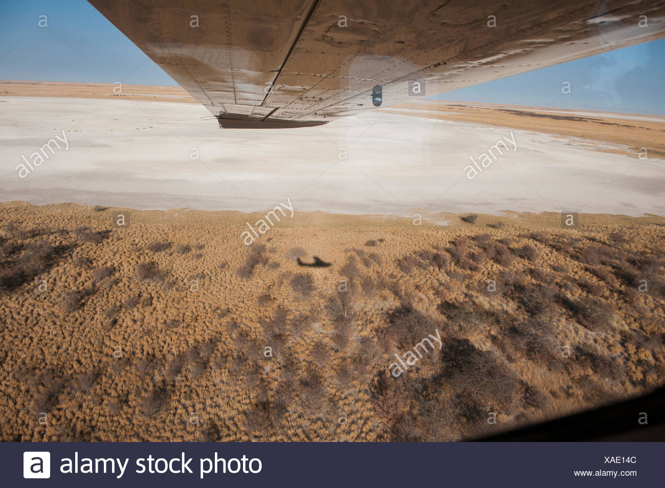 Vast and otherworldly, the salt pans of Botswana's Kalahari Desert dwarf a bush plane's shadow. - Stock Image