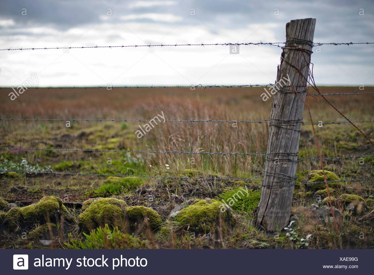 Wooden post and barbed wire, fence near Kirkjubæjarklaustur, Kirkjubaejarklaustur, Skaftárhreppur, Suðurland, Sudurland, Iceland - Stock Image