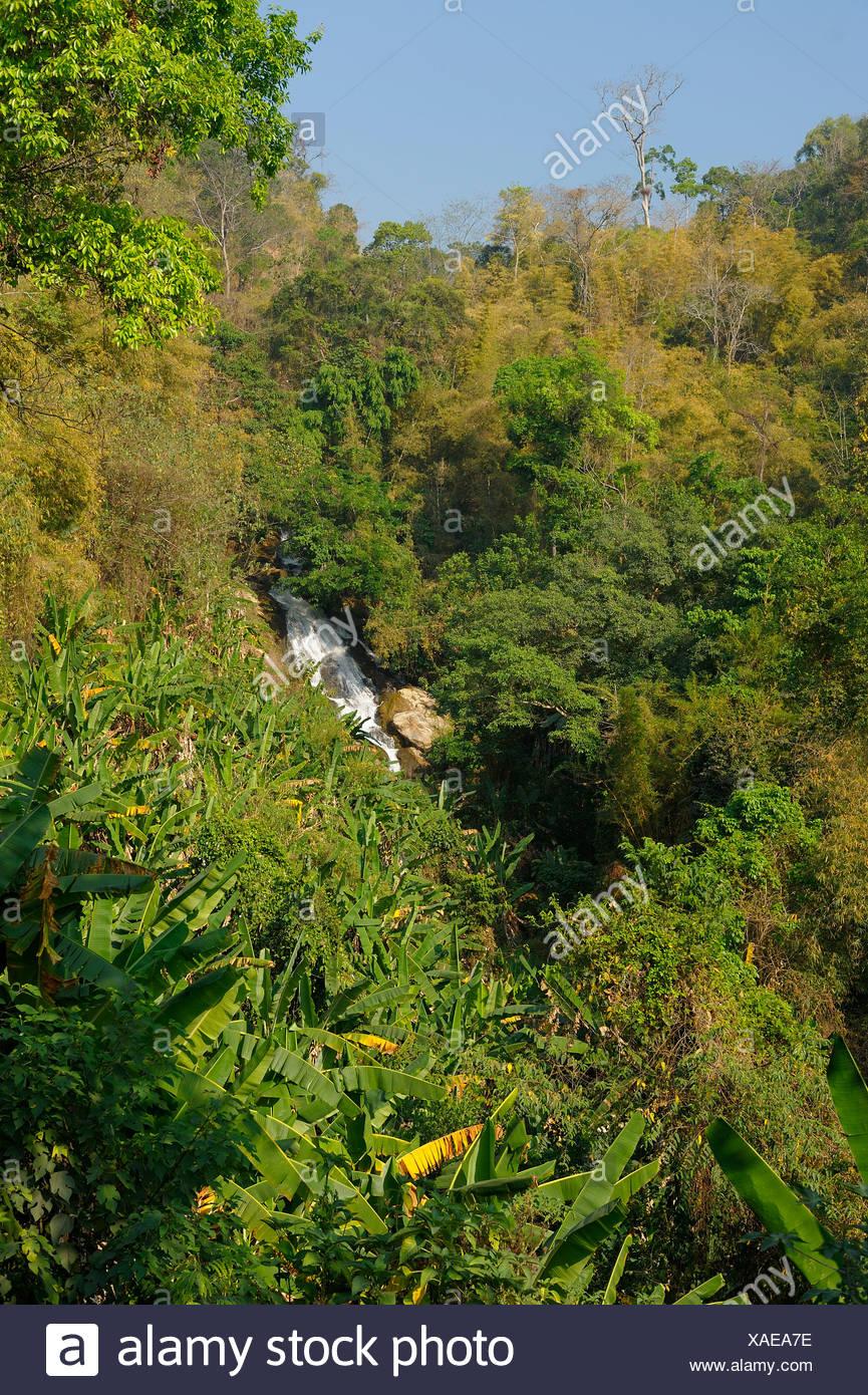 Waterfall, Mae Sa, green, Valley, Chiang Mai, Thailand, Asia, - Stock Image
