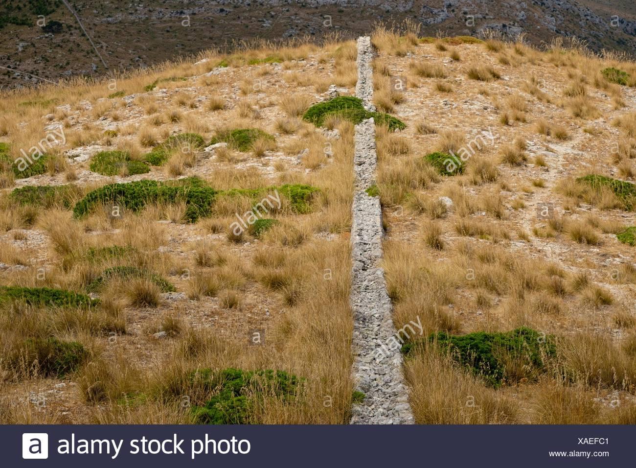 muro de pedra en sec, parque natural de la serra de Llevant, Arta, Majorca, Balearic Islands, Spain - Stock Image