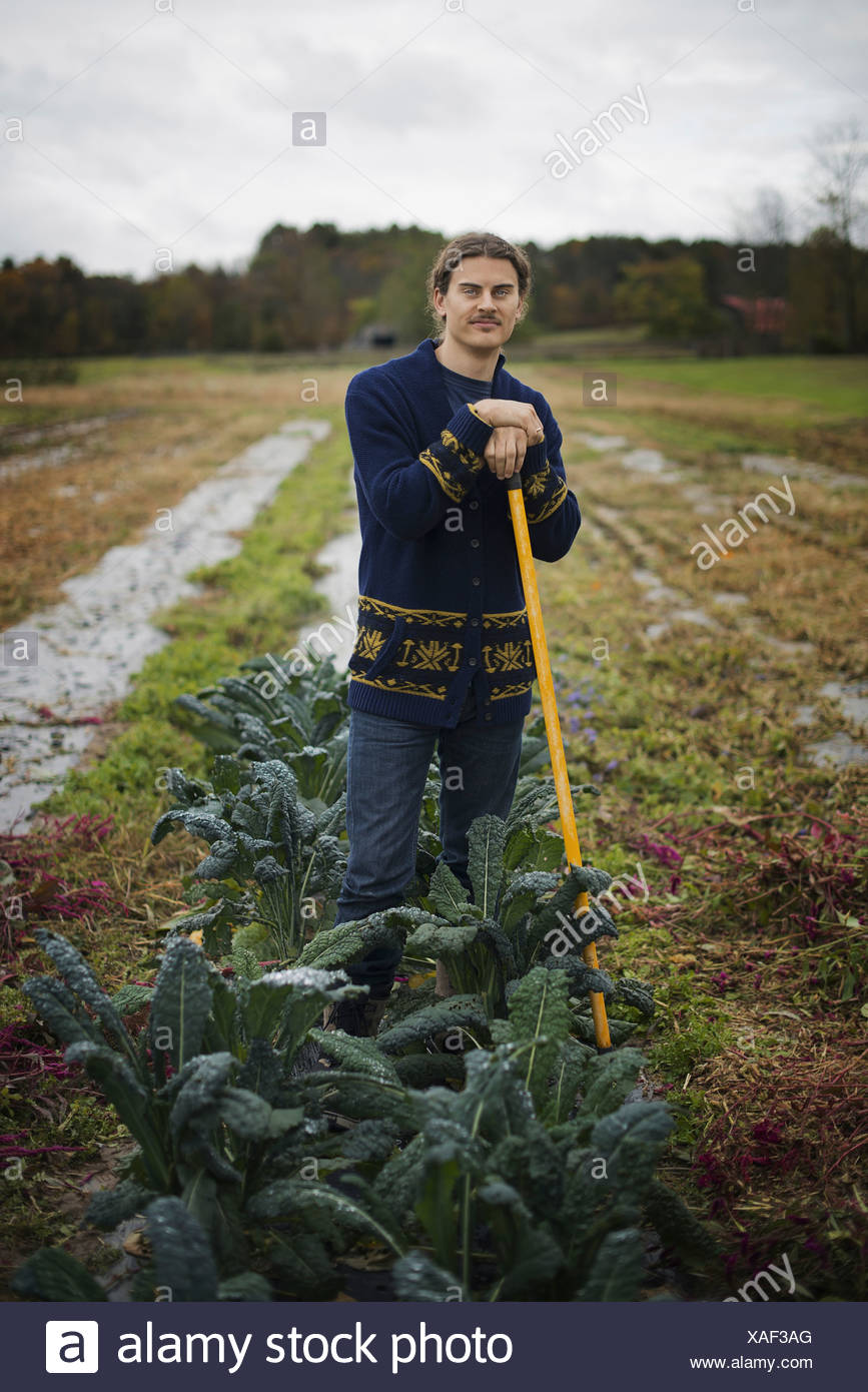 Organic Farmer at Work A young man leaning on a long handled garden hoe among the crops - Stock Image